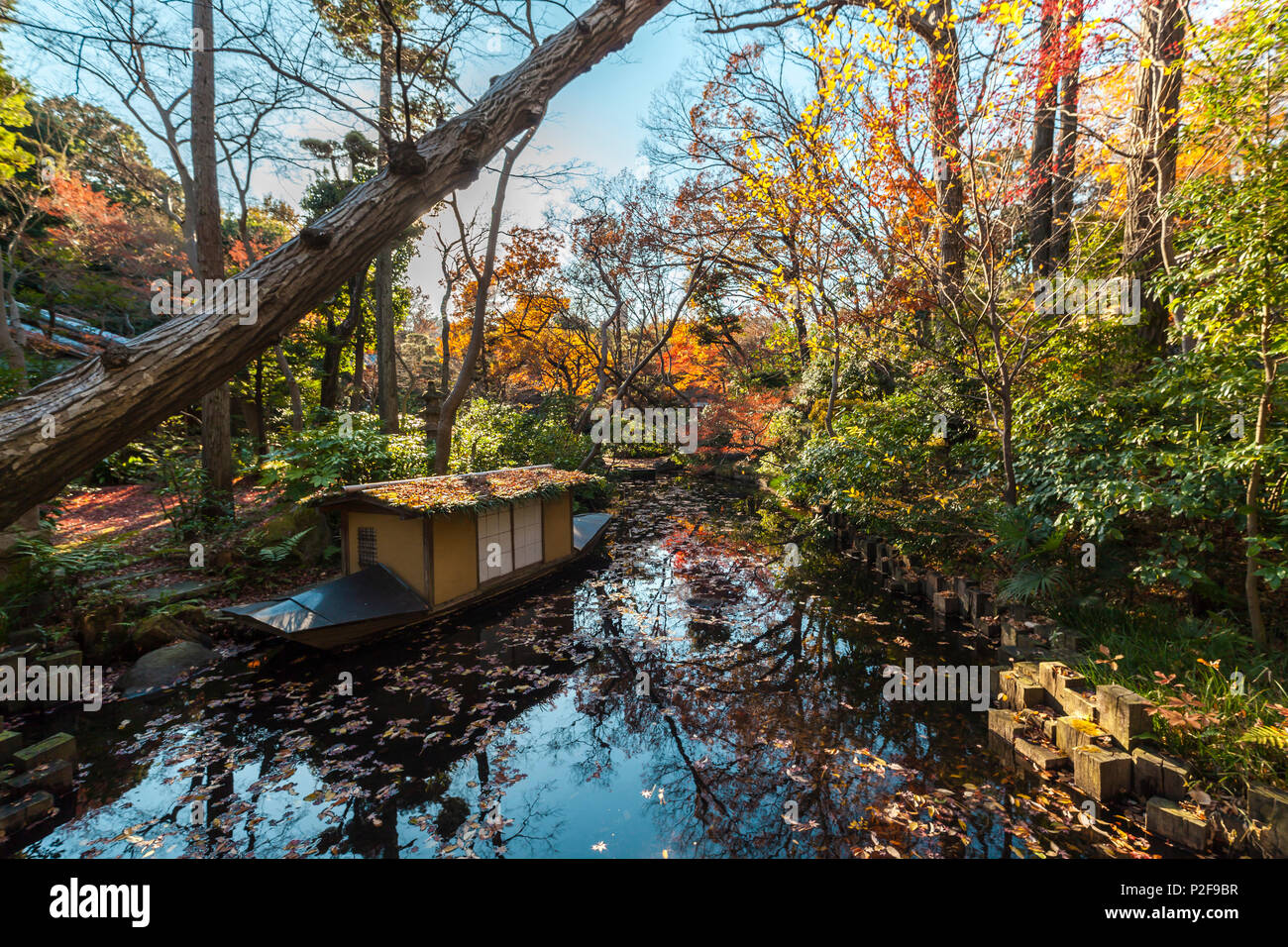 Small pond with boat at garden at Nezu Museum in autumn, Minato-ku, Tokyo, Japan Stock Photo