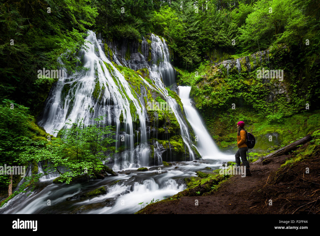 Panther Falls in souther Washington. The lush greenery and waterfalls of the Pacific Northwest are a must visit. - Stock Image