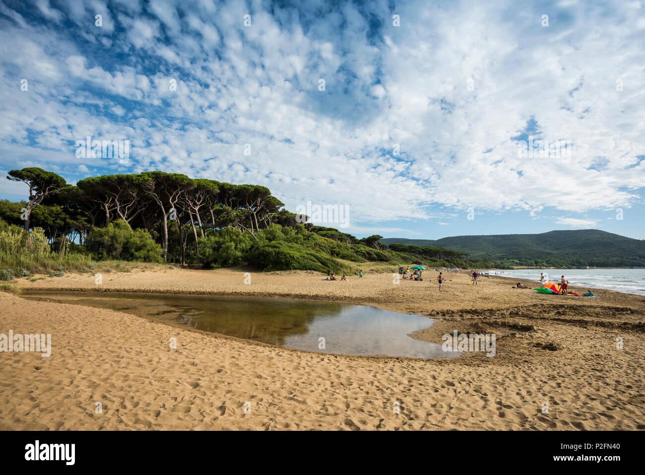 Beach, Populonia, near Piombino, province of Livorno, Tuscany, Italy - Stock Image