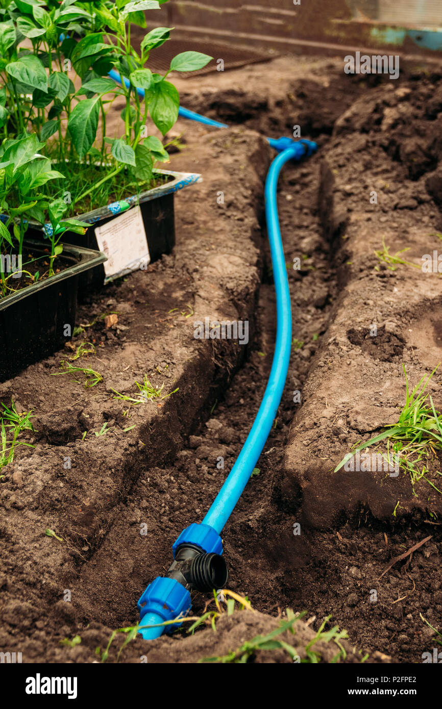 Garden Pvc Pipe Stock Photos & Garden Pvc Pipe Stock Images - Alamy