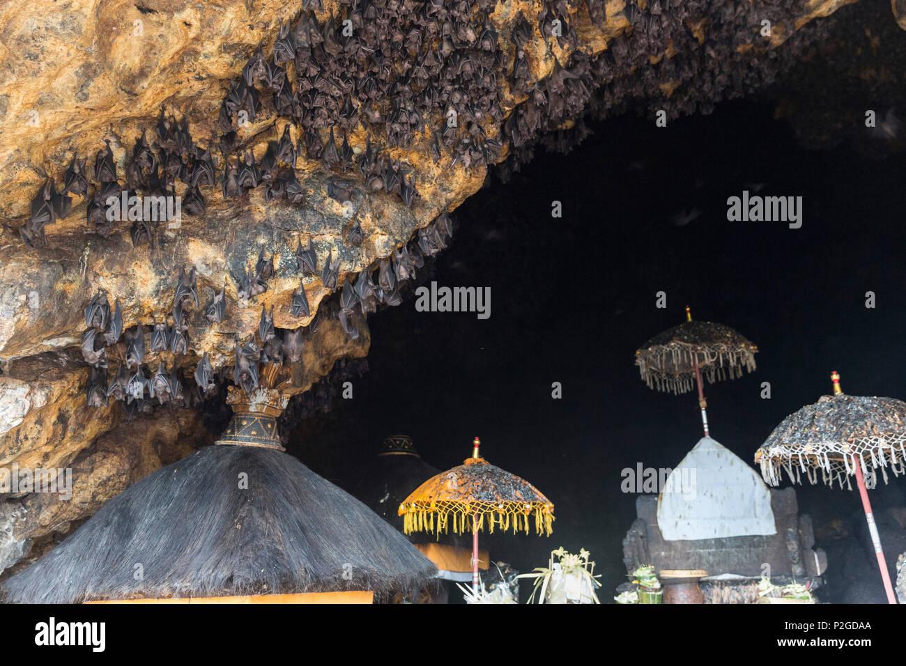 Odalan Festival Pura Goa Lawah Bat Cave Padangbai Bali