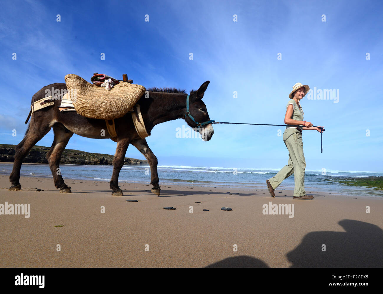Donkey hiking along the beach of Aljezur with Sofia von Mentzingen and donkey Mocca, Costa Vicentina, Algarve, Portugal - Stock Image