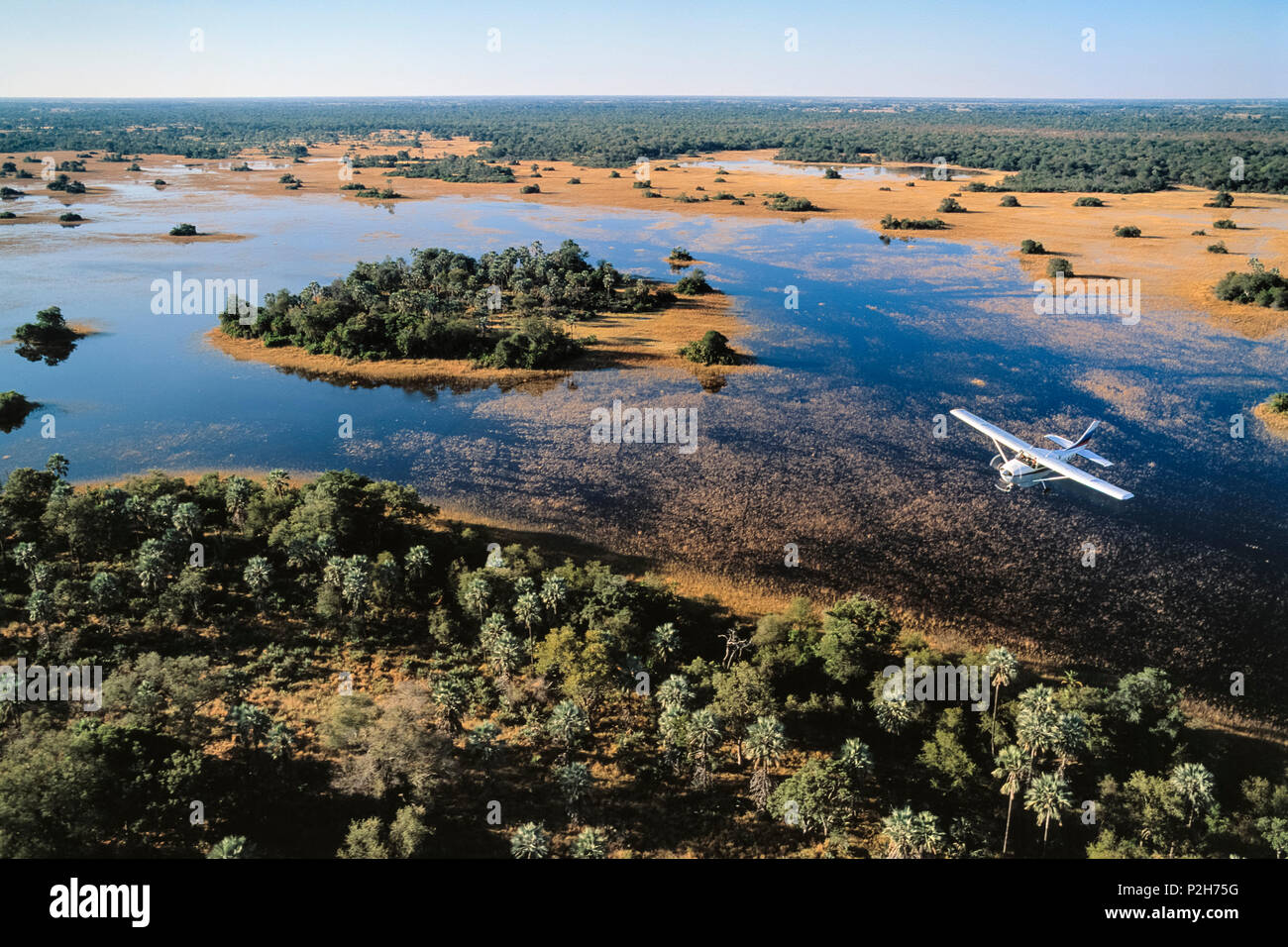 Flight Safari, Okavango-Delta, Botswana, Africa Stock Photo