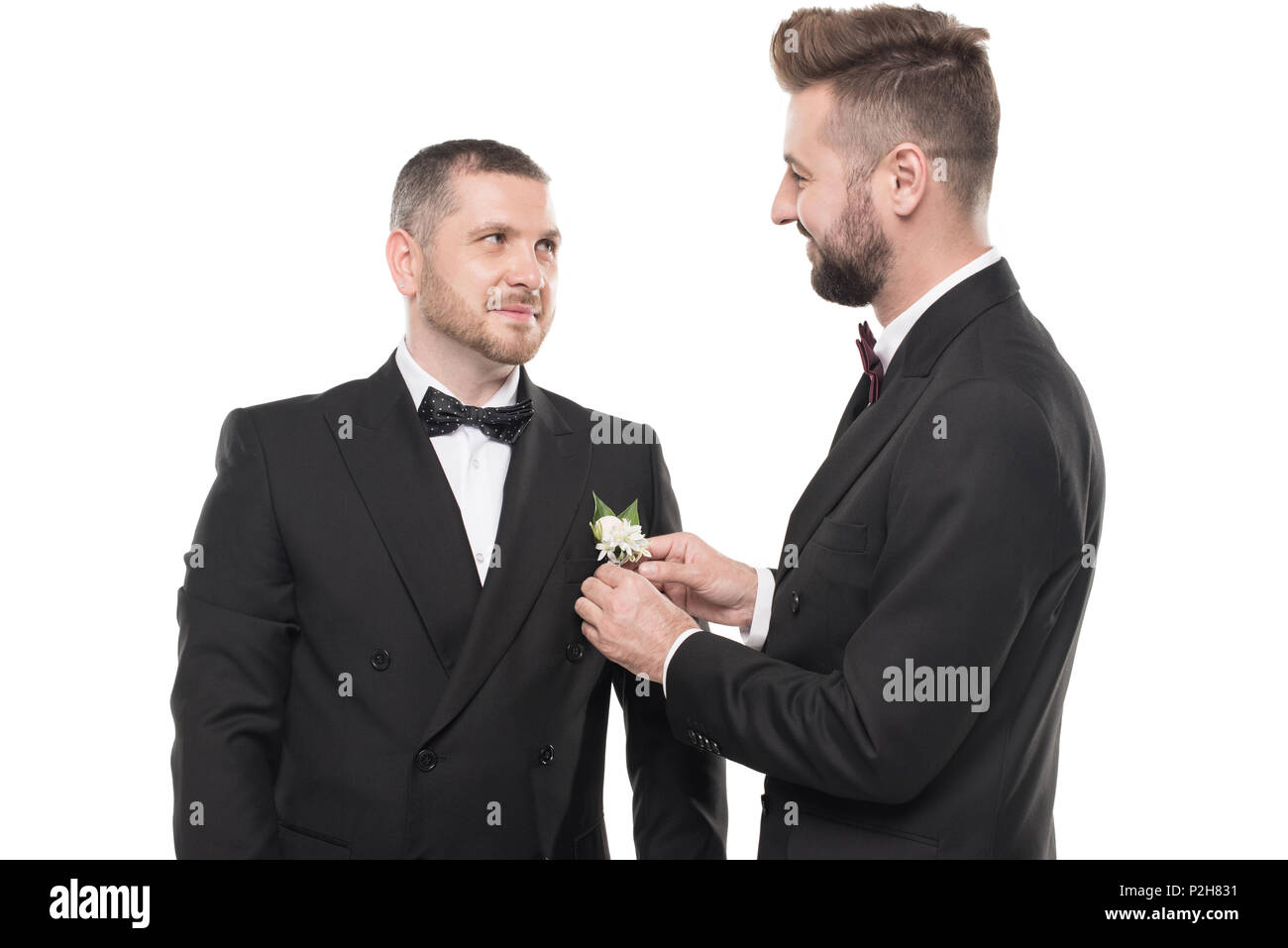 couple of grooms in tuxedos preparing to wedding day isolated on white - Stock Image