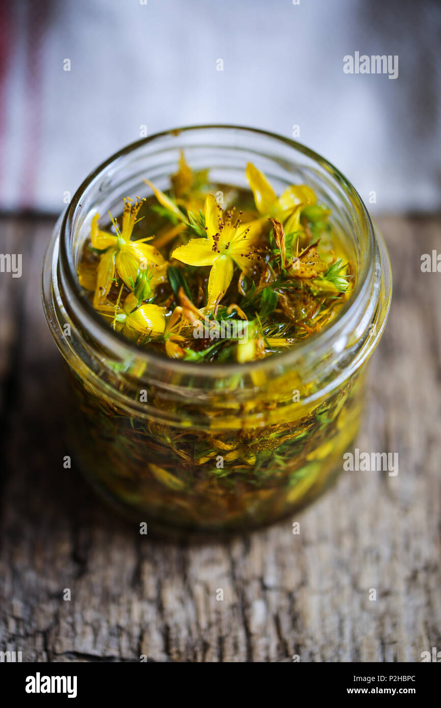 Hypericum flowers in maceration under oil. - Stock Image