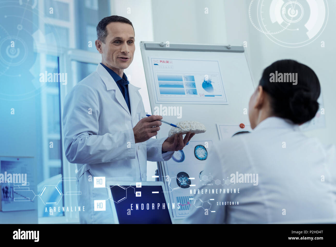 Friendly doctor holding a brain model and giving a lecture to colleagues - Stock Image