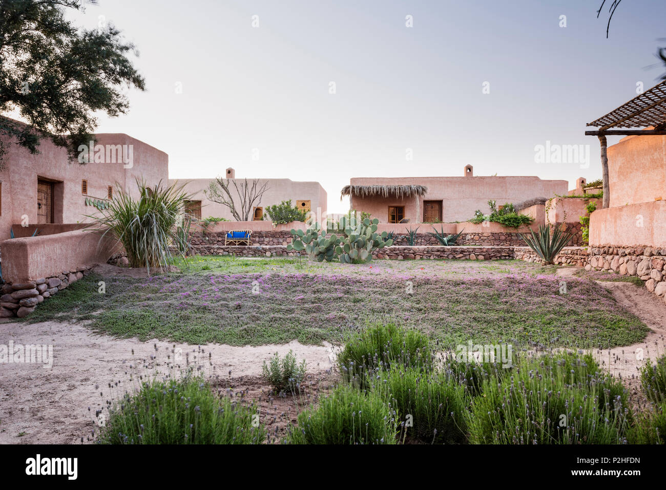 Exterior facade of adobe Berber style lodges with garden of lavender, herbs and moroccan wild plants. Garden design by Arnaud Casaus - Stock Image