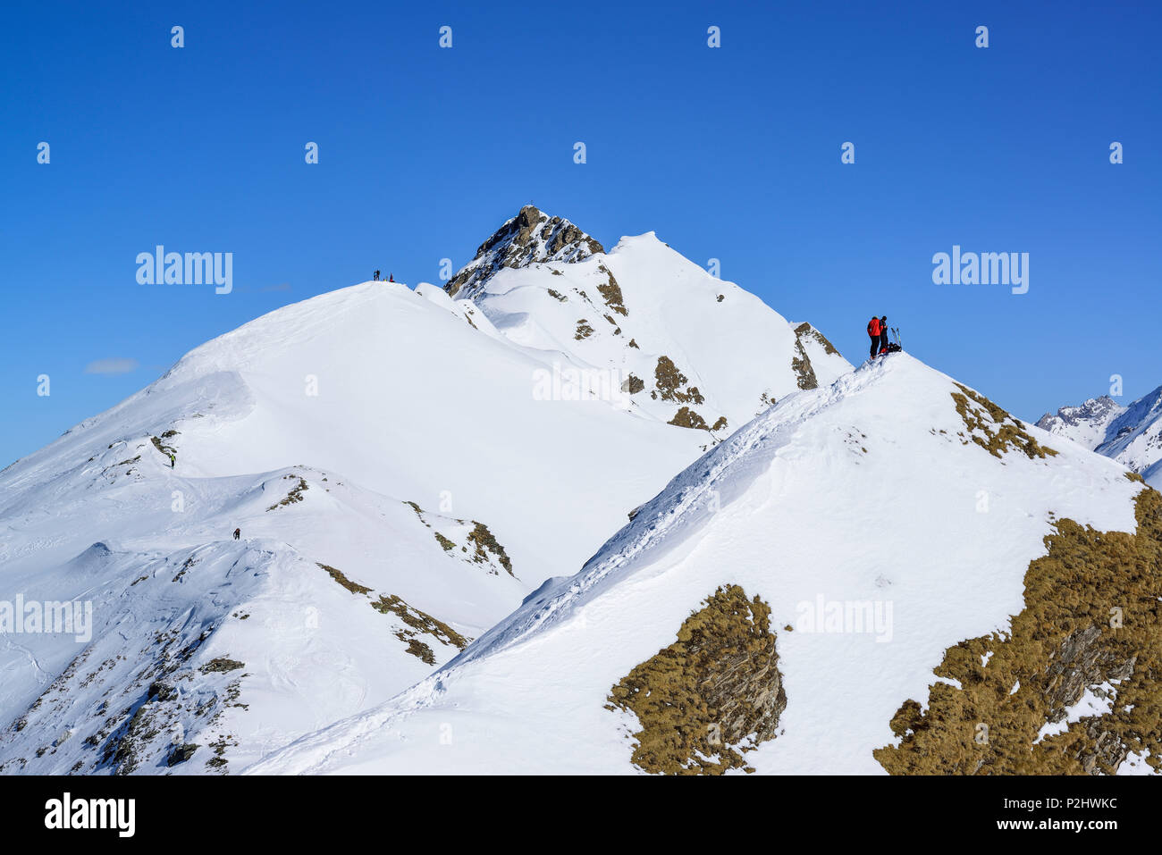 Several persons back-country skiing standing on a ridge between Gammerspitze and Hohe Warte, Gammerspitze, valley of Schmirn, Zi - Stock Image