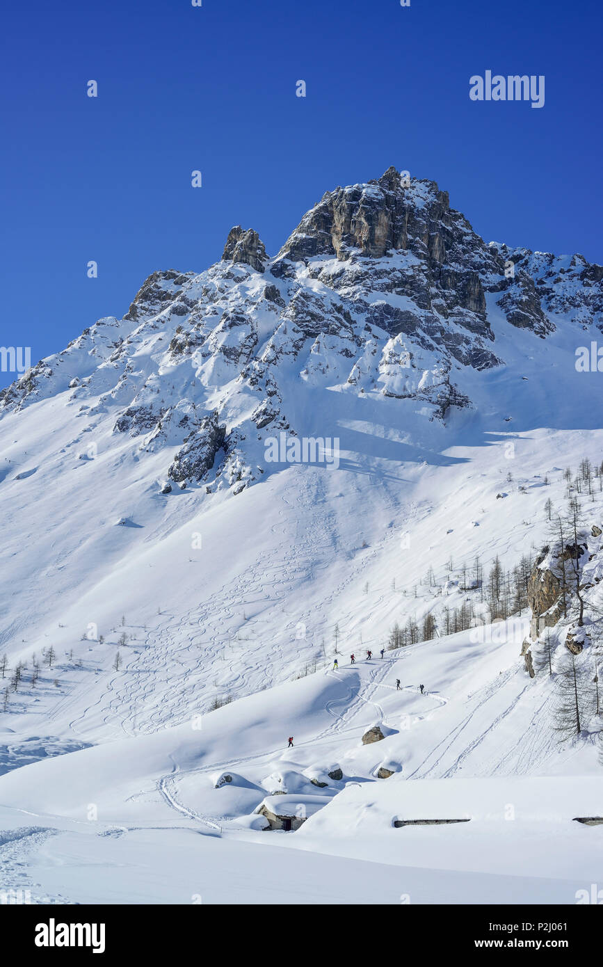 Several persons back-country skiing ascending to Passo Croce, Cobre in the background, Passo Croce, Valle Maira, Cottian Alps, P - Stock Image