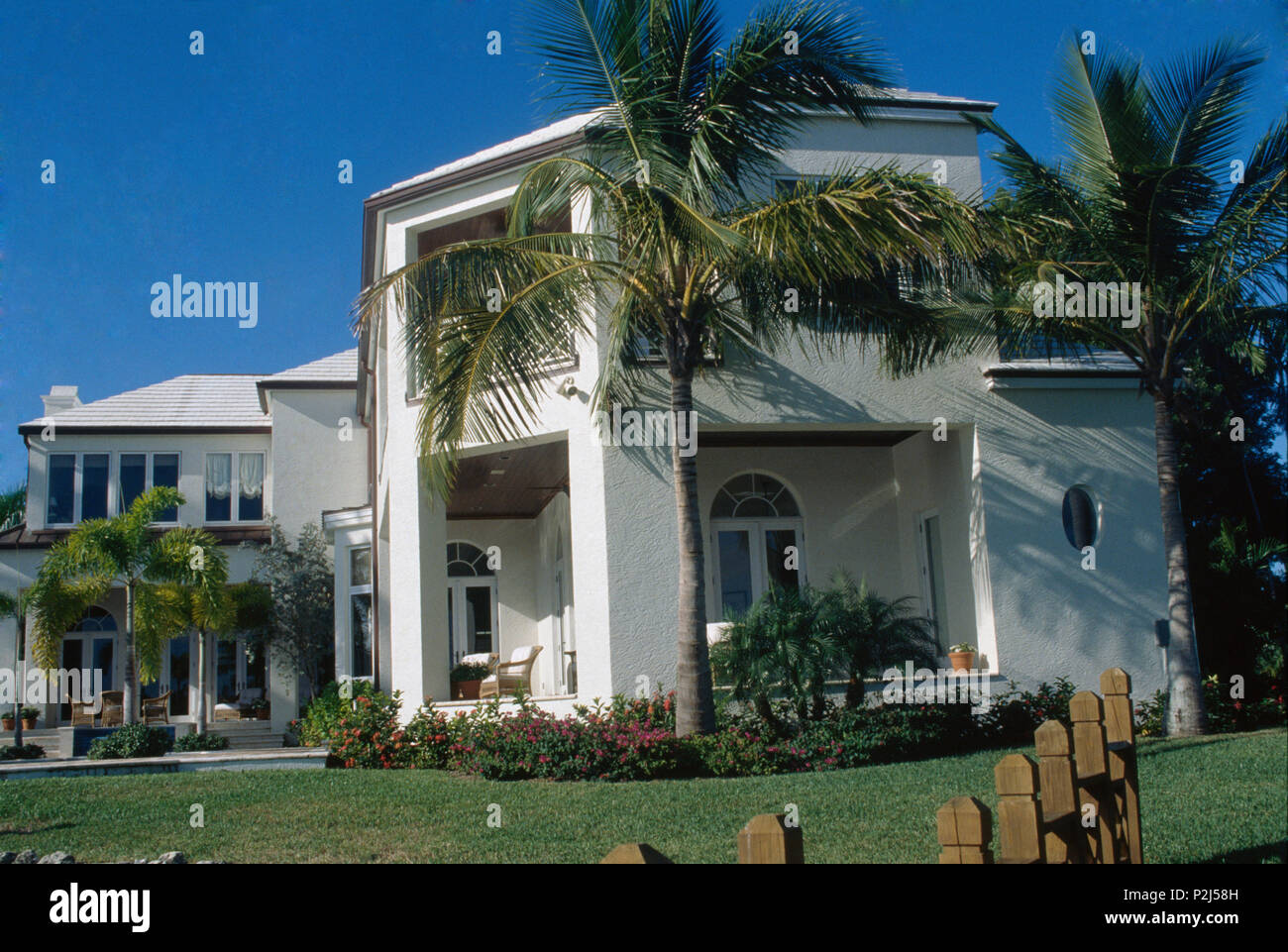 Palm trees in front of modern villa in Florida Stock Photo