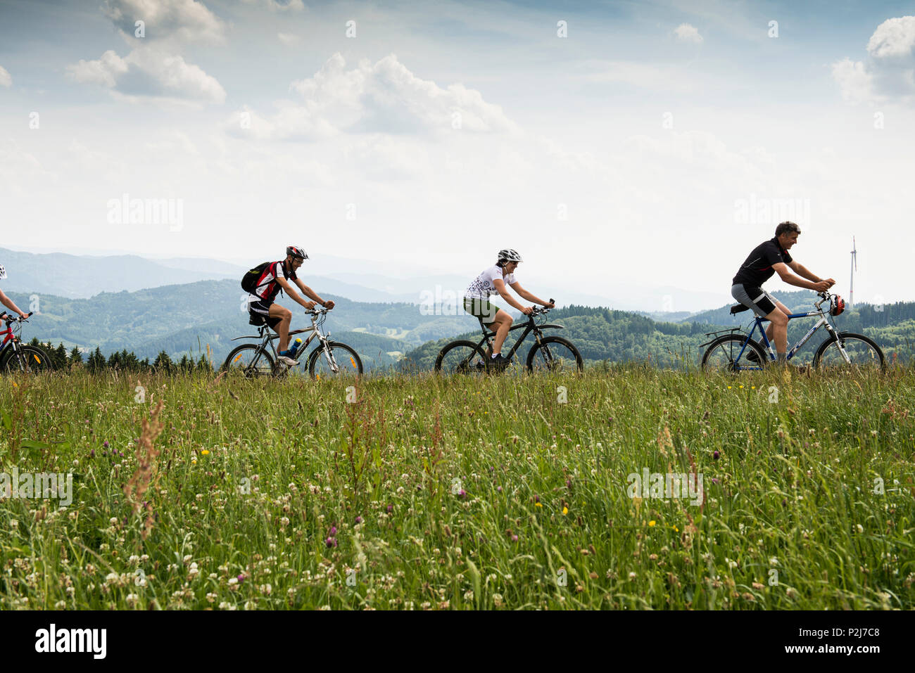 Mountain bikers near Freiamt, north of Freiburg im Breisgau, Black Forest, Baden-Wuerttemberg, Germany - Stock Image
