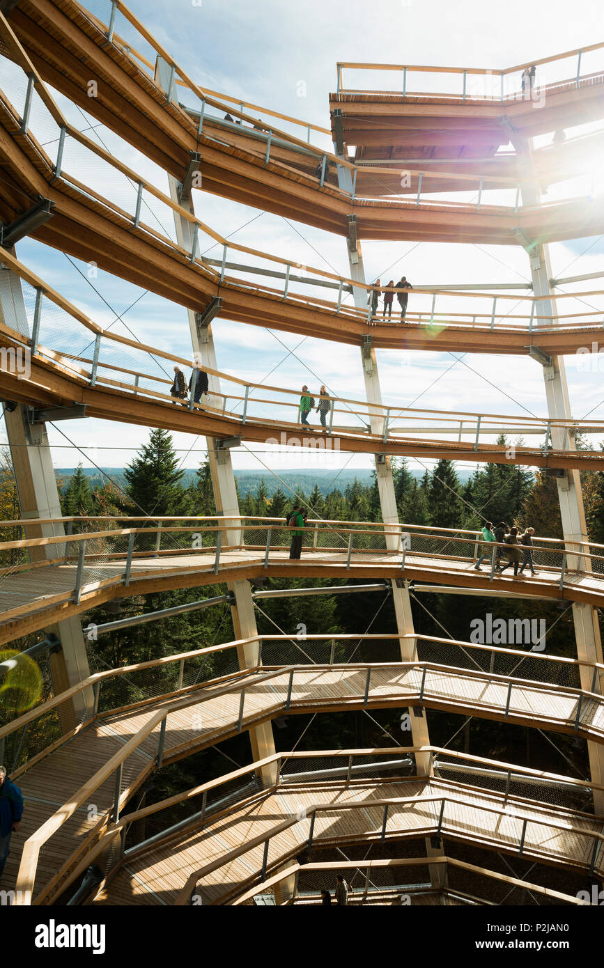 Tree top walk, Bad Wildbad, district of Calw, Black Forest, Baden-Wuerttemberg, Germany - Stock Image