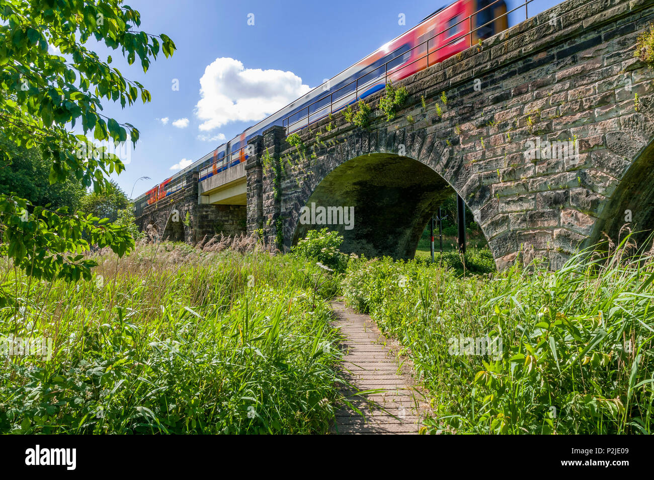 Viaduct over the Sankey canal with train passing over it. Sankey Valley Linear Park. Stock Photo