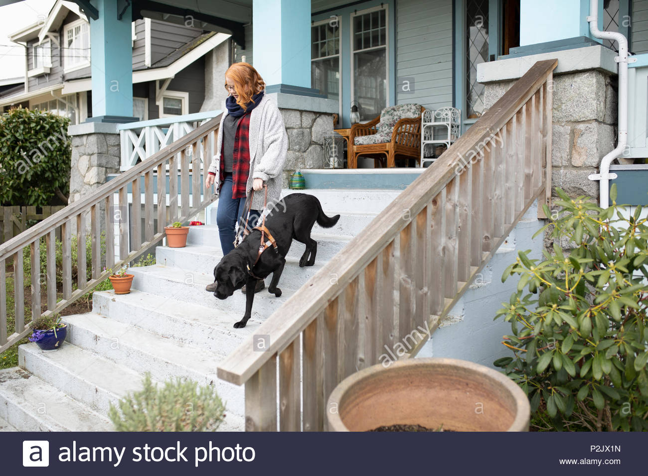 Seeing eye dog leading visually impaired woman down stairs - Stock Image