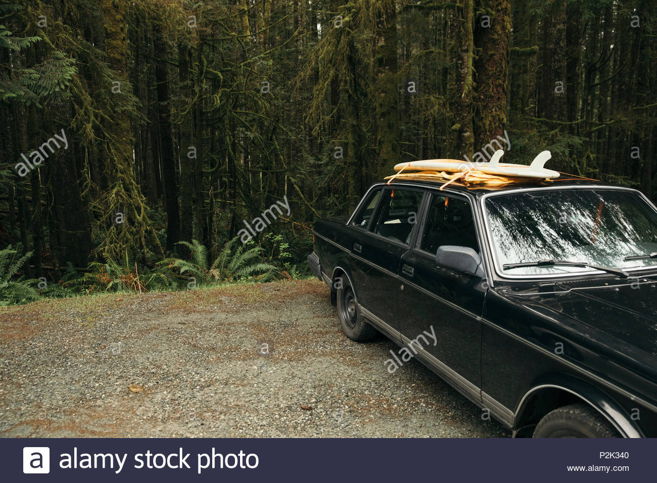 Surfboards on car in parking lot in woods - Stock Image