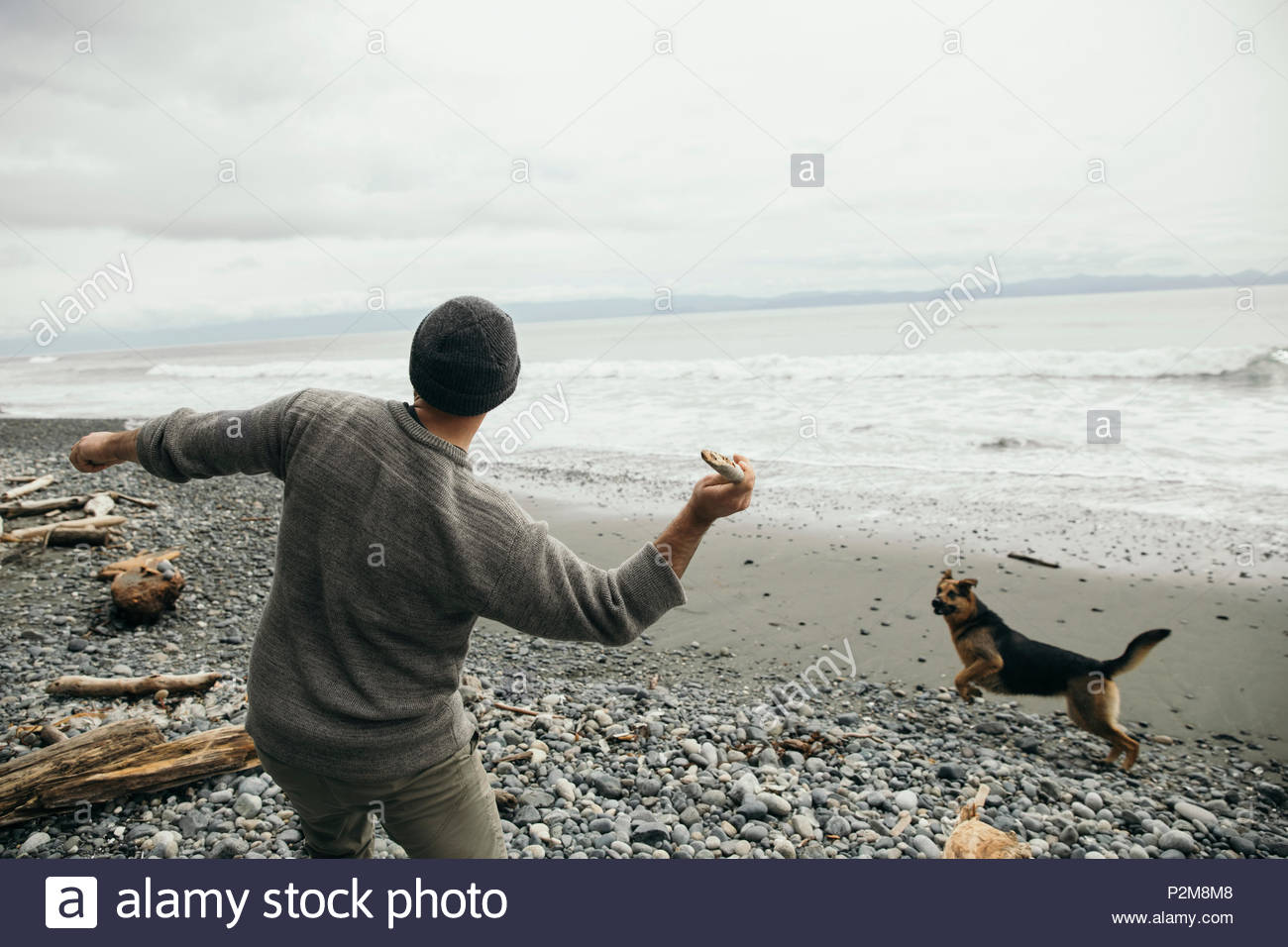 Man throwing stick for dog on rugged beach - Stock Image