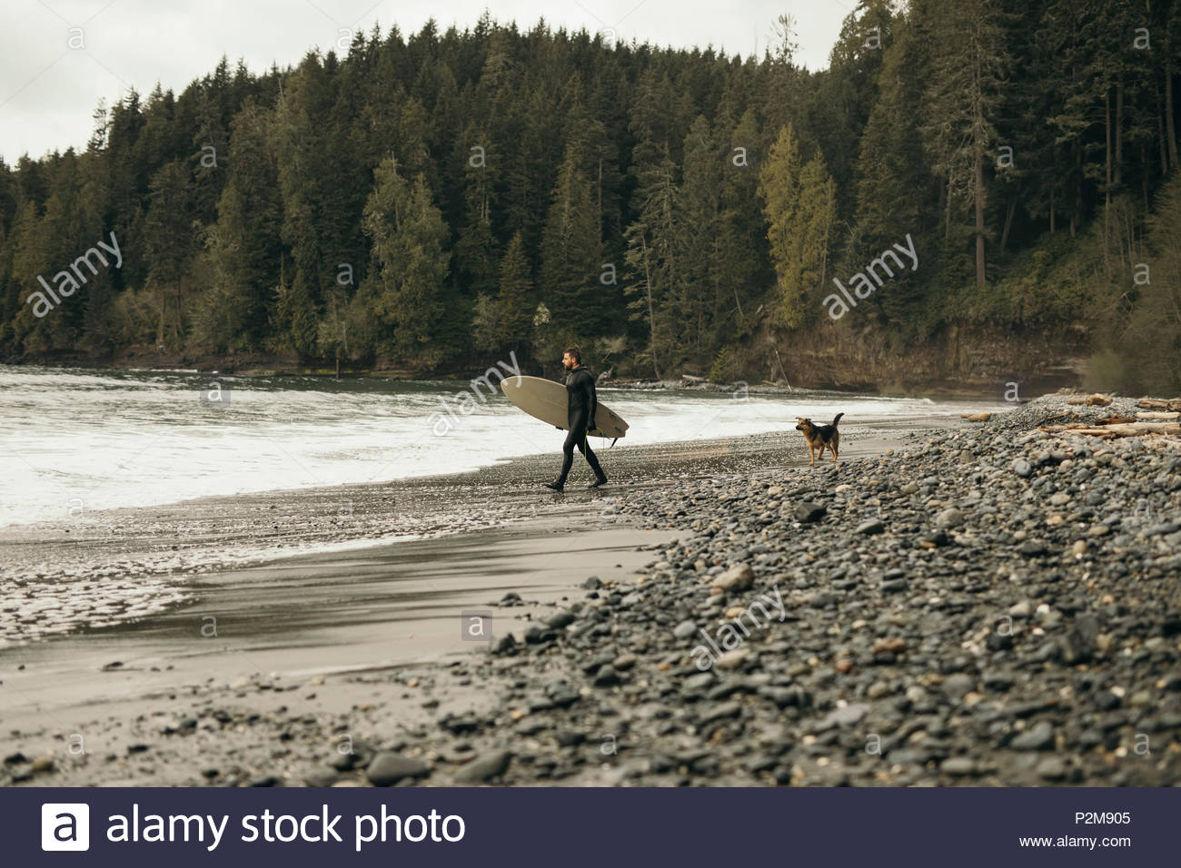 Male surfer with dog carrying surfboard on rugged beach - Stock Image