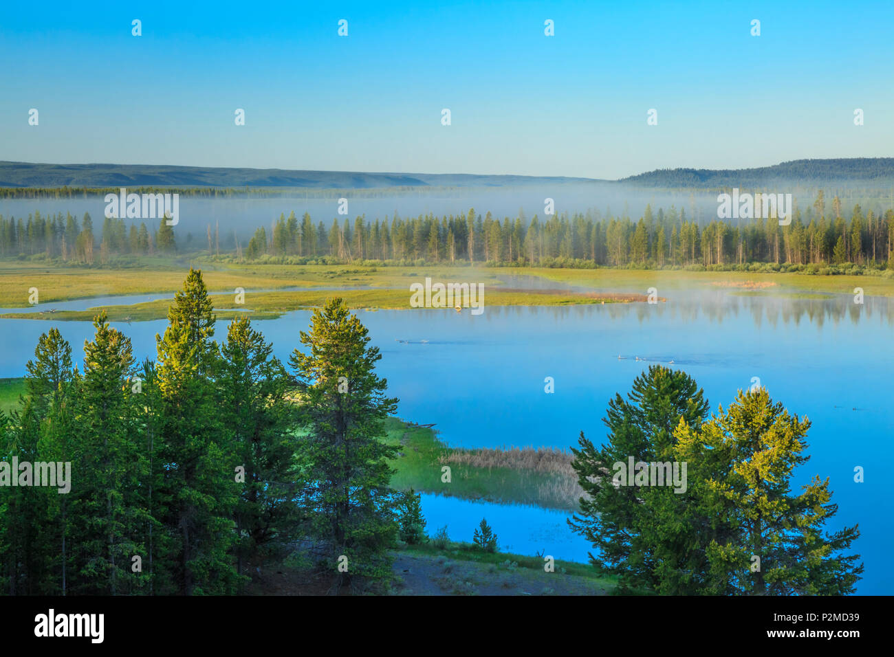 fog rising over the madison river flowing into the madison arm of hebgen lake near west yellowstone, montana - Stock Image