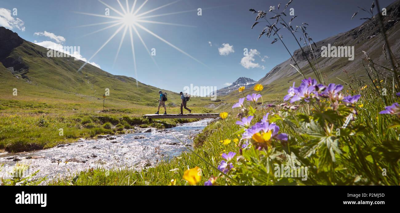 Alp Sursass, Sesvenna range between Unterengadin Switzerland and Val Venosta, Italy - Stock Image
