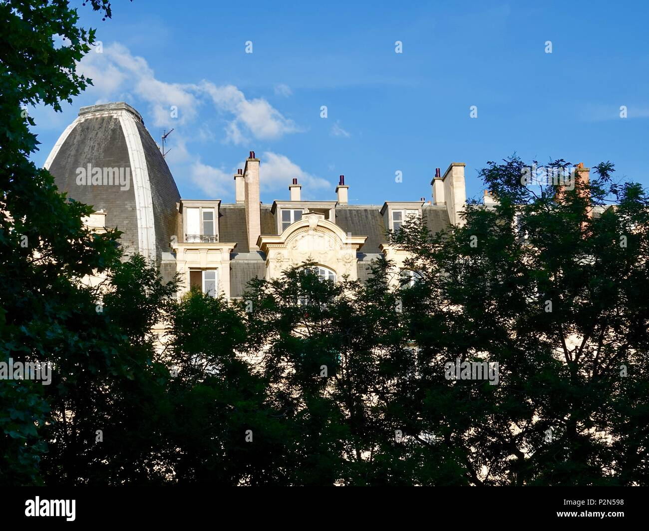 Rooftop of typical Parisian architectural style in the 11th Arrondissement, seen above the tree line in late afternoon sunlight. Paris, France. - Stock Image