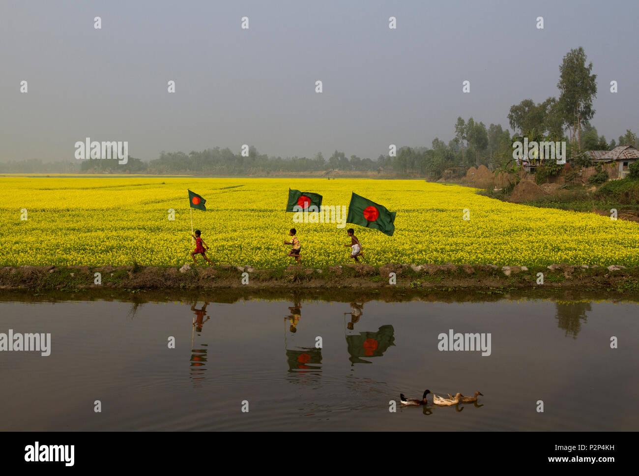 Bangladeshi rural children run with Bangladeshi national flag through a mustard field at Chalan Beel in Natore. Bangladesh. - Stock Image
