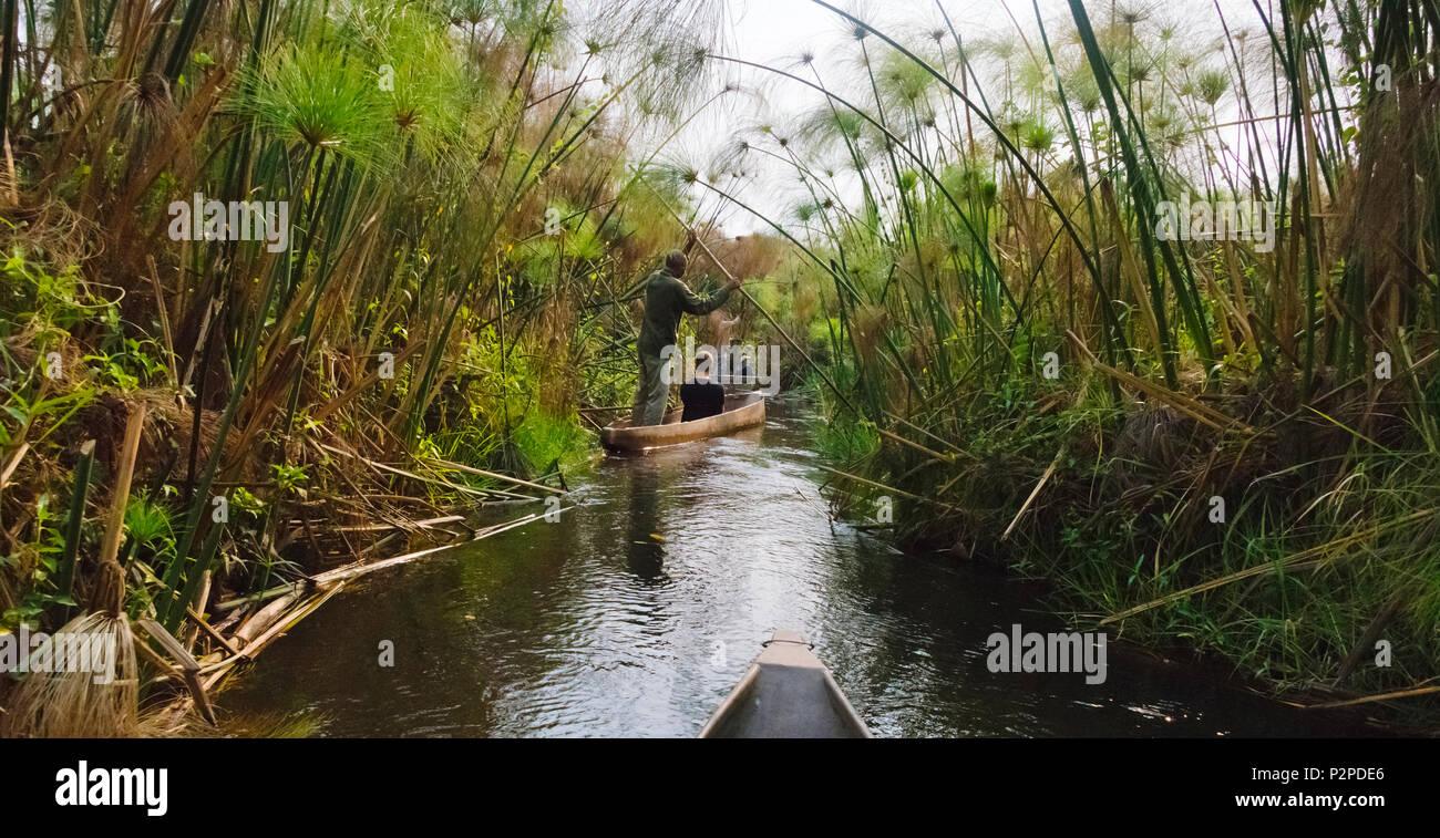 Rowing traditional Mokoro (dugout canoe) on Okavango Delta, North-West District, Botswana - Stock Image