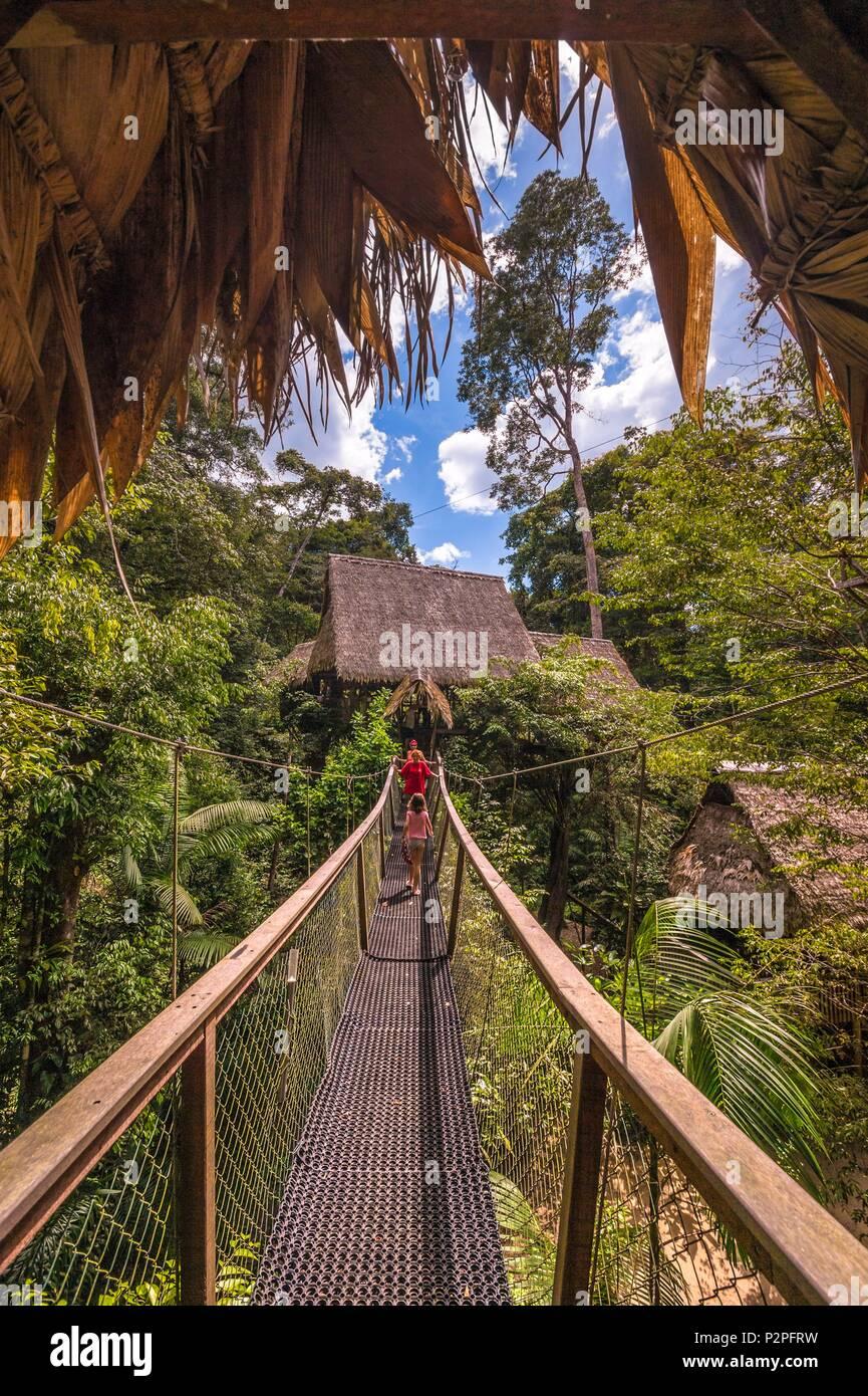 Rainforest Person Suspension Bridge Stock Photos Rainforest Person