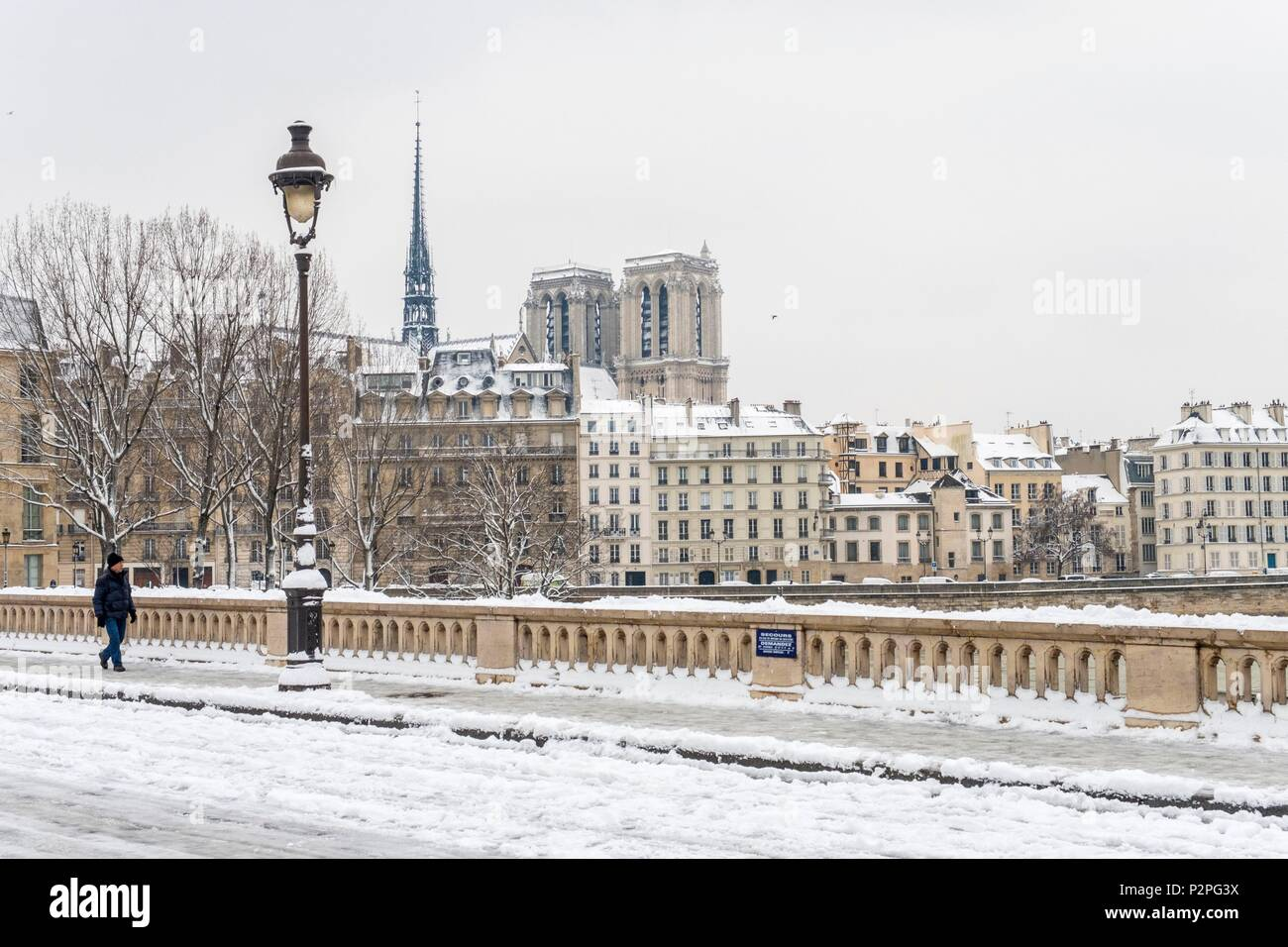 France, Paris, area listed as World Heritage by UNESCO, on the Louis Philippe bridge with Notre Dame cathedral, snowfalls on 07/02/2018 - Stock Image