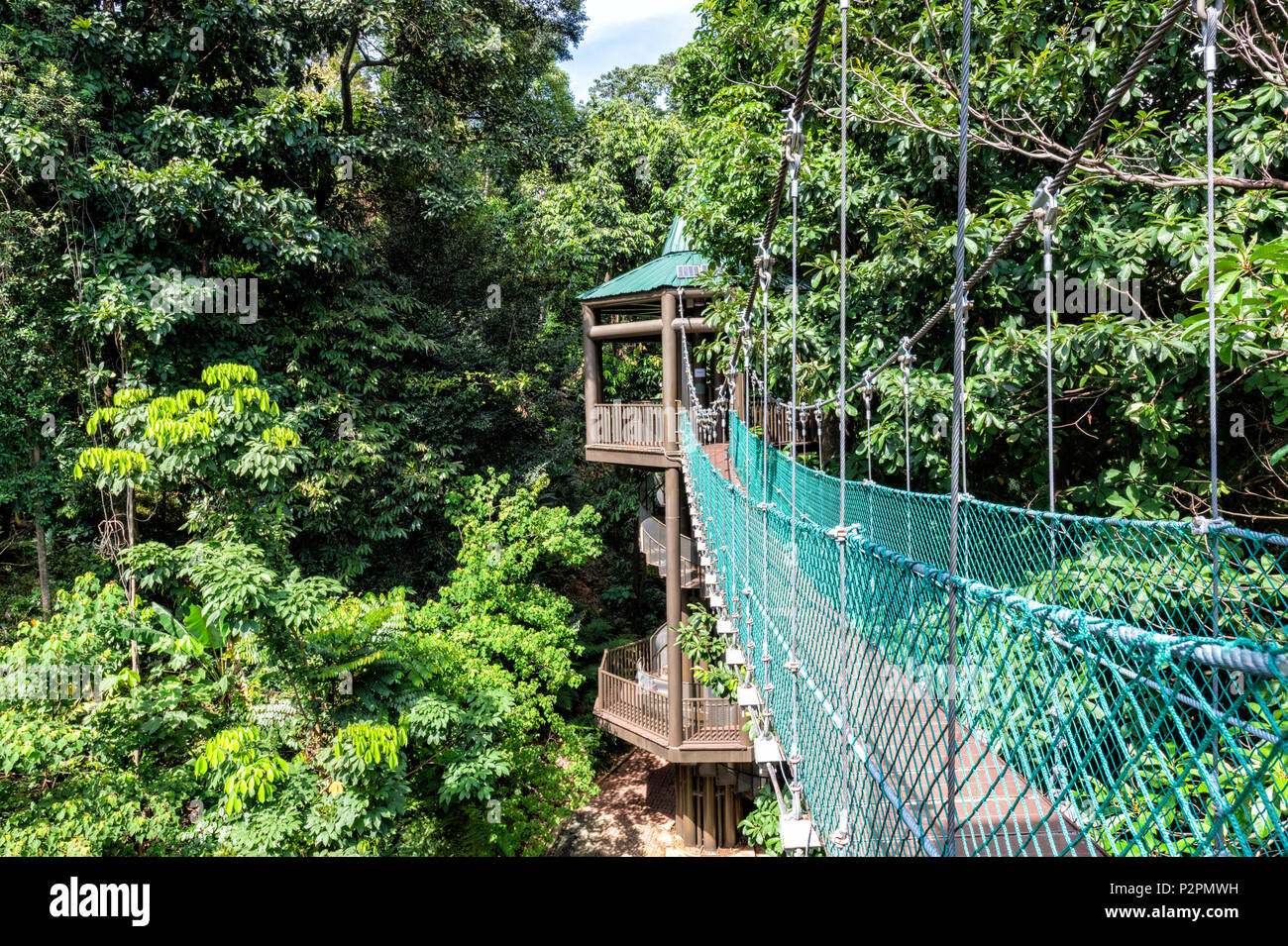 The KL Forest Eco Park Canopy Walk in Kuala Lumpur Malaysia & The KL Forest Eco Park Canopy Walk in Kuala Lumpur Malaysia Stock ...