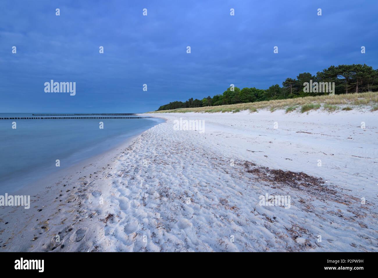 Summer, Beach, Dam, Blue Hour, Baltic Sea, Mecklenburg, Germany, Europe - Stock Image