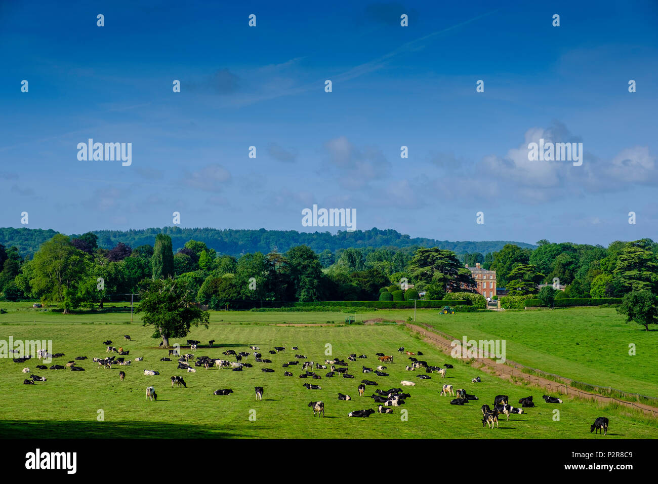 Somerset. 15th Jun, 2018. UK Weather: Sunshine over Milborne Port in Somerset with Ven House built in the Queen Anne architectural style; the A30 road runs in front. Credit: David Hansford Photography/Alamy Live News Stock Photo