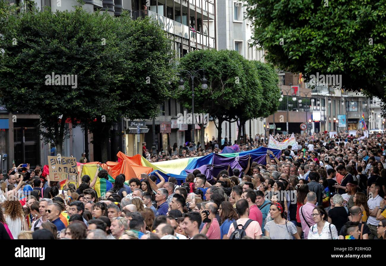 Thousands participate in an LGTBI pride march, called by 50 associations, in Valencia, Spain, 16 June 2018. EFE/Manuel Bruque - Stock Image