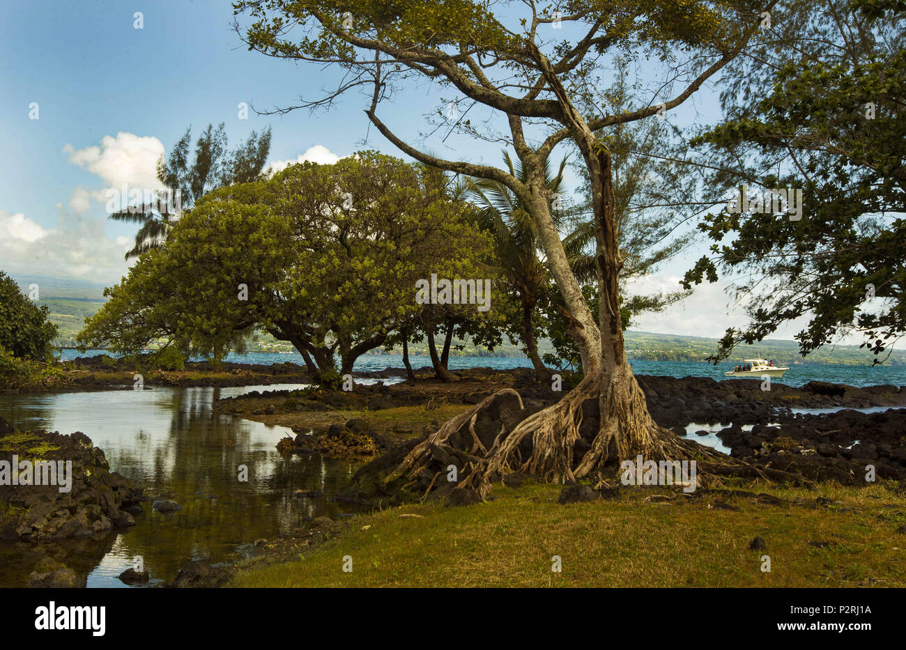 Pahoa, Hawaii, USA. 6th June, 2018. The Hilo Bayfront Beach Park is surrounded in lush vegetation as the Kilauea Volcano lower east rift zone continues the eruption on Wednesday, June 6, 2018, in Pahoa, Hawaii. Credit: L.E. Baskow/ZUMA Wire/Alamy Live News Stock Photo