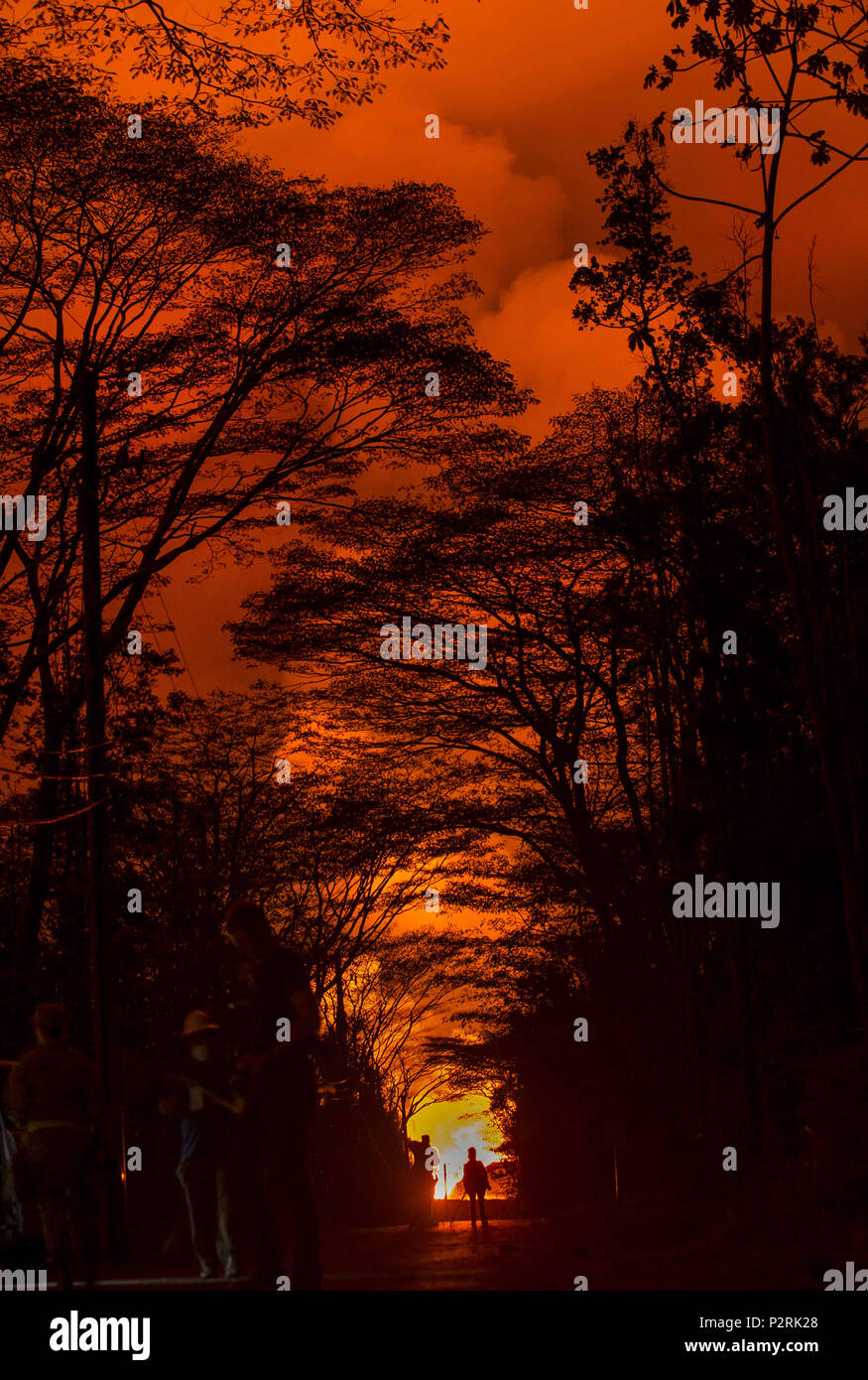 Pahoa, Hawaii, USA. 9th June, 2018. Fissure 8 illuminates the night sky above Leilani Estates at Luana Street due to chemicals emitted during the Kilauea Volcano eruption on Wednesday, June 6, 2018, in Pahoa, Hawaii. Credit: L.E. Baskow/ZUMA Wire/Alamy Live News - Stock Image