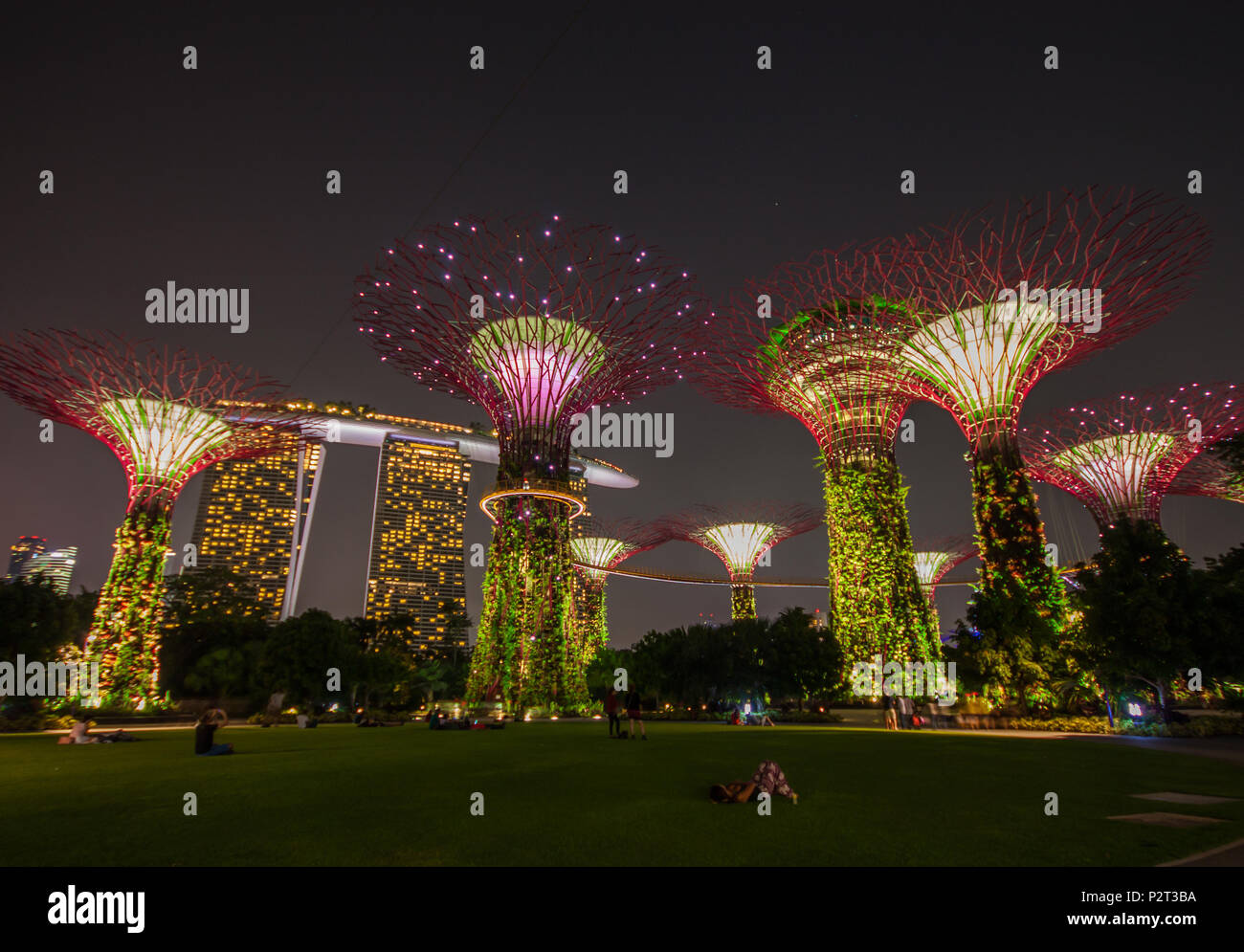 Gardens by the bay and marina bay sands stock photos - Least crowded swimming pool singapore ...