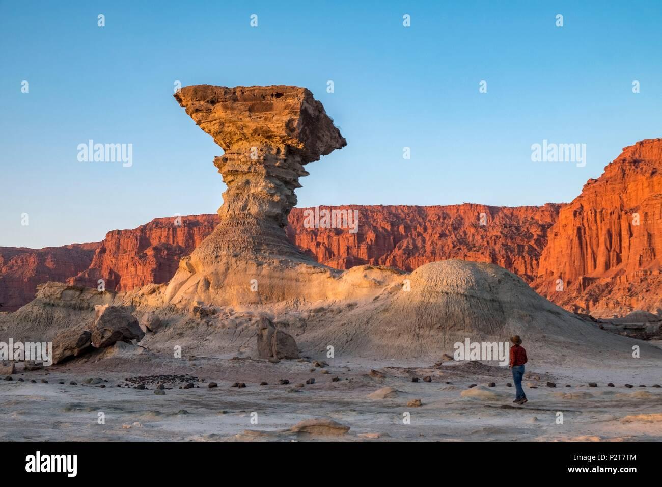 Argentina, San Juan Province, near San Augustin de Valle Fertil, Valle de la Luna, Moon Valley, Parque Ischigualasto listed as World Heritage by UNESCO, Pillar Rock, Hongo - Stock Image