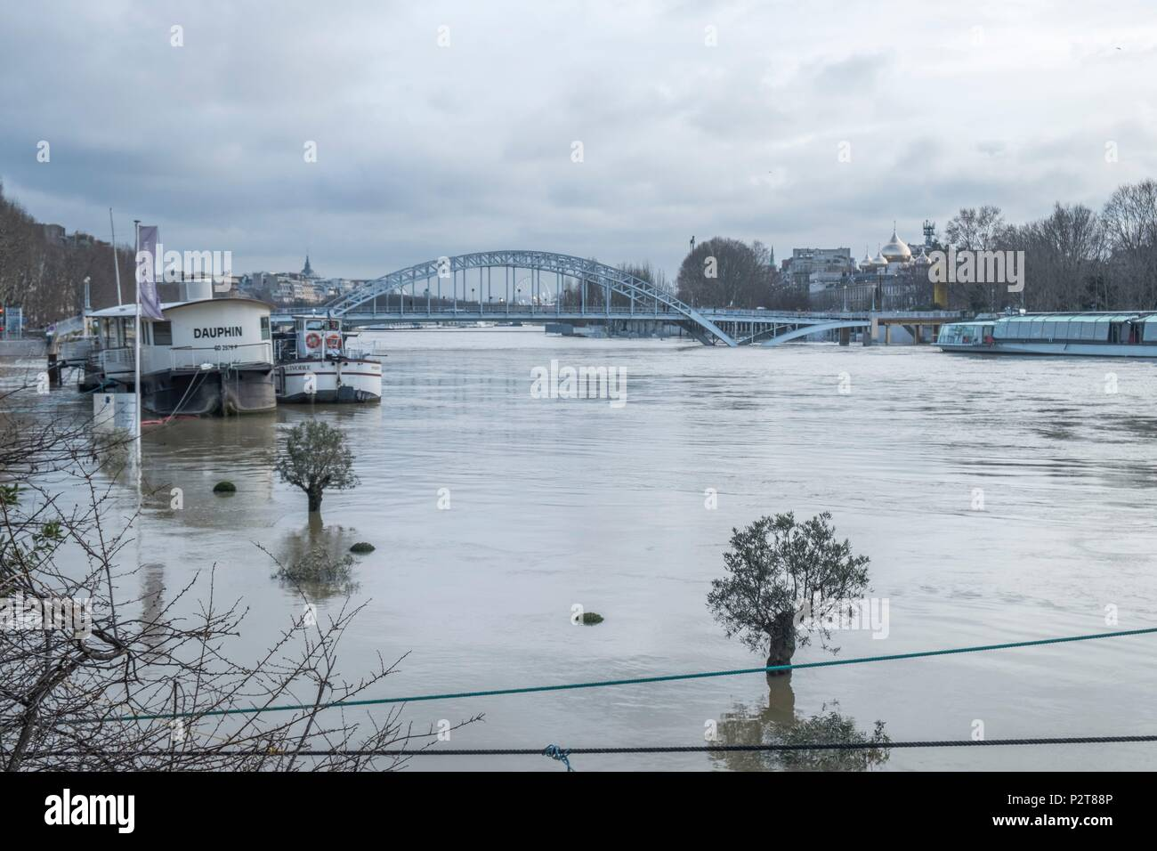 France, Paris, area listed as World Heritage by UNESCO, the flood of the Seine river - Stock Image