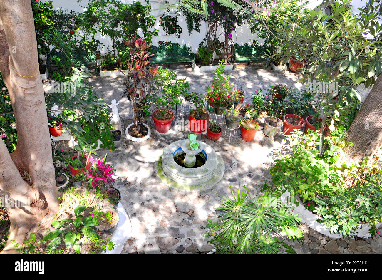 Mexican Patio Garden   Stock Image