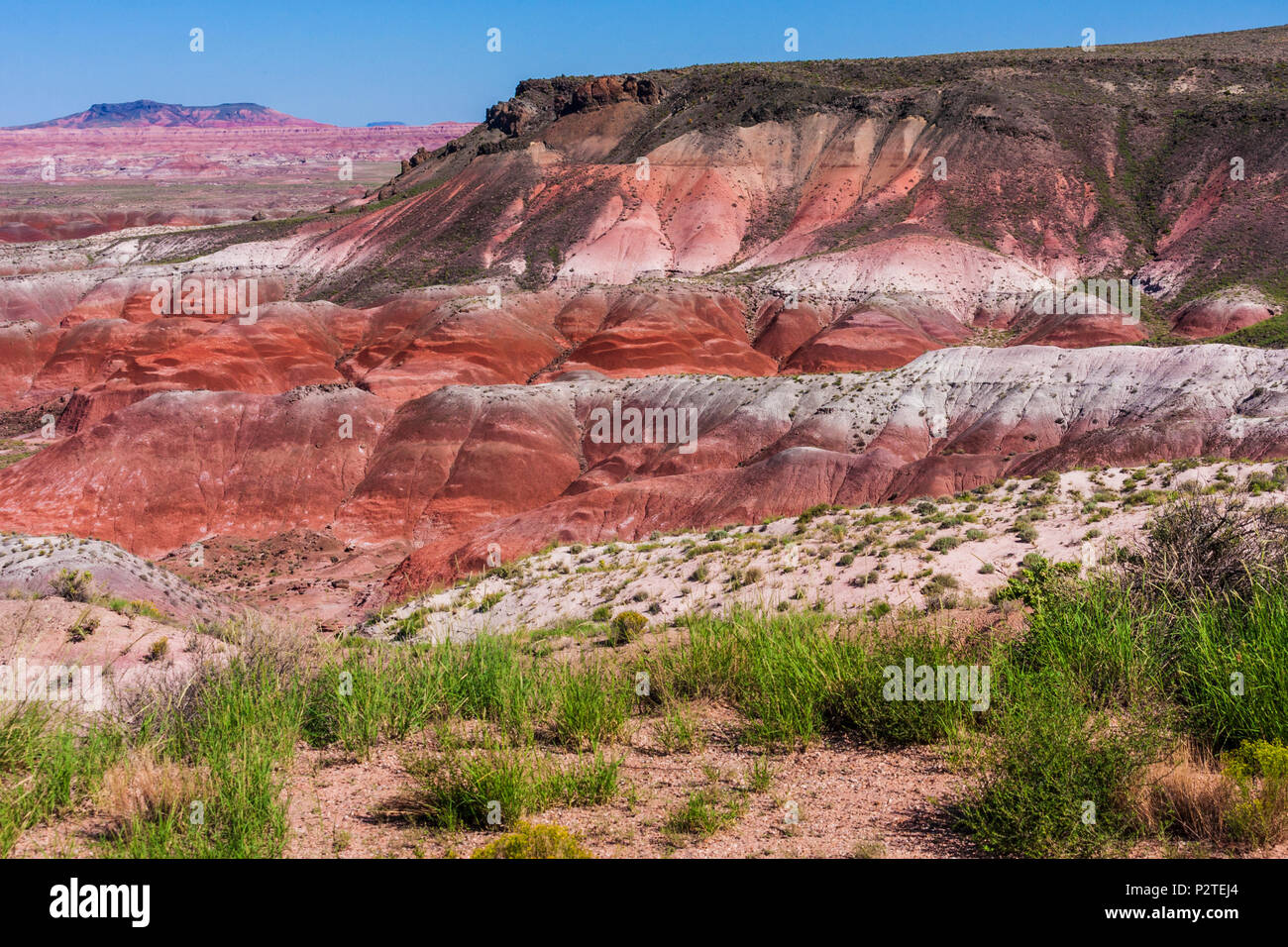 Painted Desert landscapes in the Petrified Forest National Park in Arizona. Established as a National Monument in 1906 by President Theodore Roosevelt - Stock Image