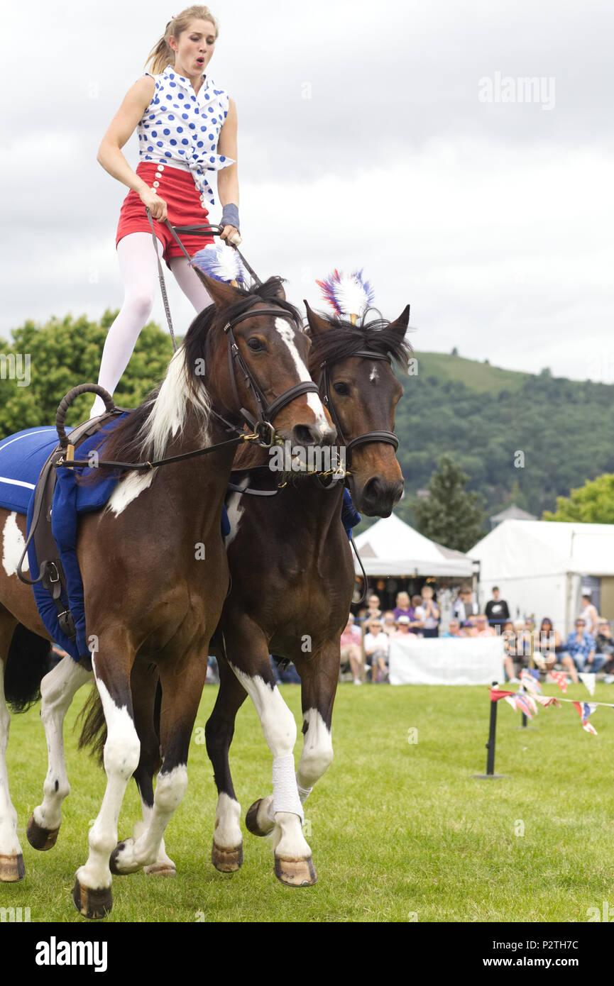Galloping Acrobats display team - Stock Image