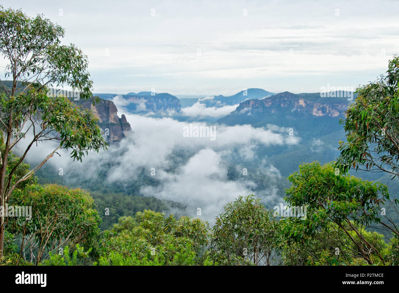 Cliff Top Track View. Blue Mountains in Australia. Stock Photo