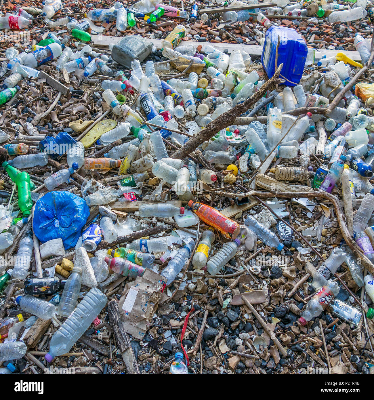 Plastic,pollution,bottles,washed up,Beach,Plastic Waste - Stock Image