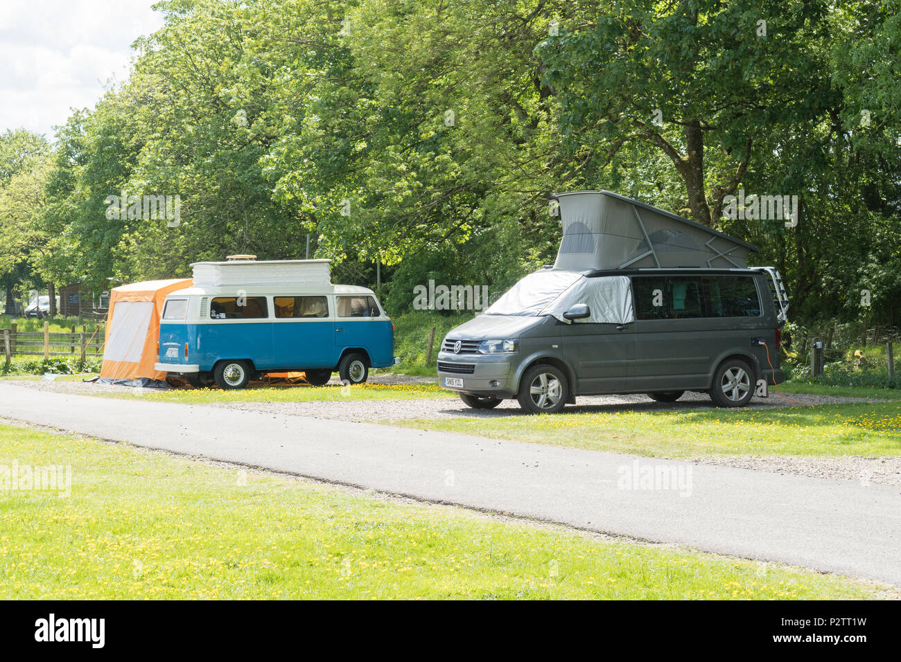 vw campers at Moffat campsite, Scotland, UK - Stock Image