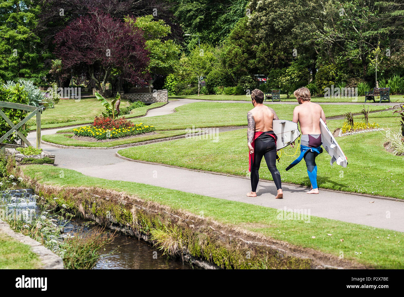 Two surfers carrying their surfboards and walking through a landscaped garden in Newquay in Cornwall. - Stock Image