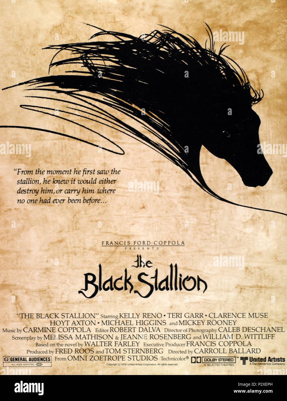 Original Film Title: THE BLACK STALLION.  English Title: THE BLACK STALLION.  Film Director: CARROLL BALLARD.  Year: 1979. Credit: UNITED ARTISTS / Album Stock Photo