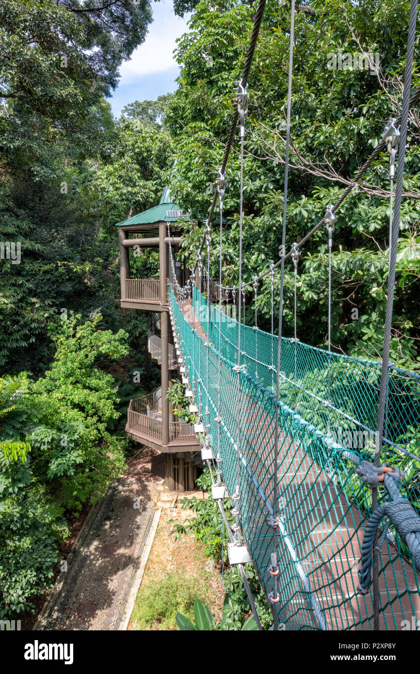 The KL Forest Eco Park Canopy Walk in Kuala Lumpur, Malaysia - Stock Image