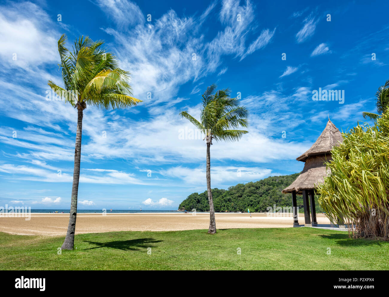 Two palm trees on a white sand beach at Kota Kinabalu, Borneo, Malaysia on the edge of the South China Sea - Stock Image