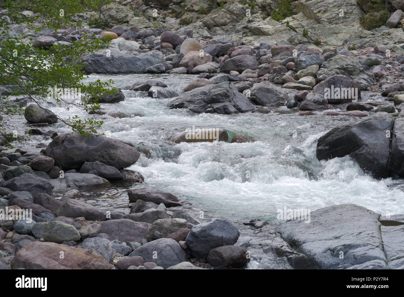 Closeup of a sparkling river in the mountain - Stock Image