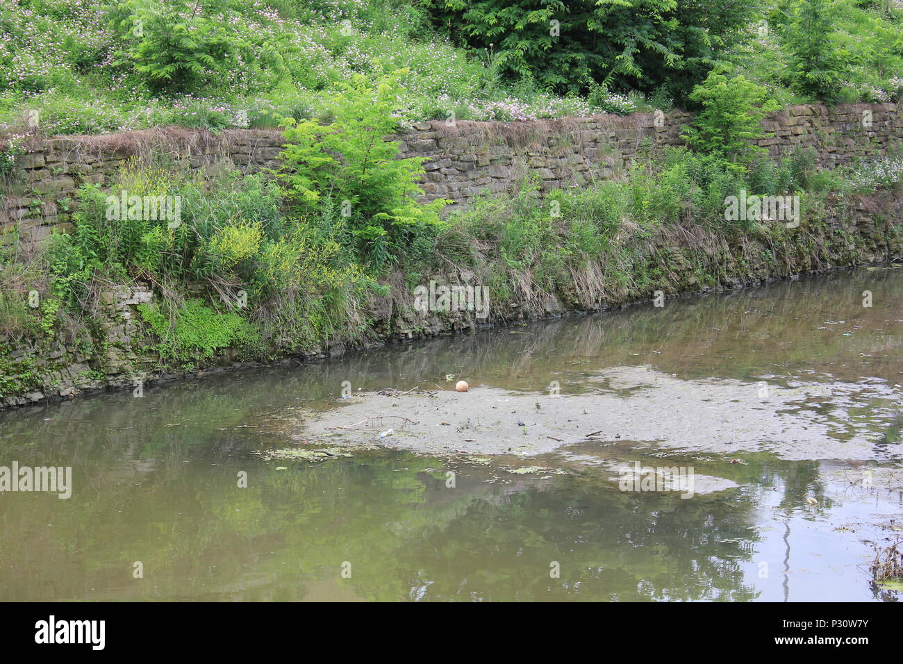 Local scenery of the historic Illinois Michigan canal in Lemont, Illinois. - Stock Image
