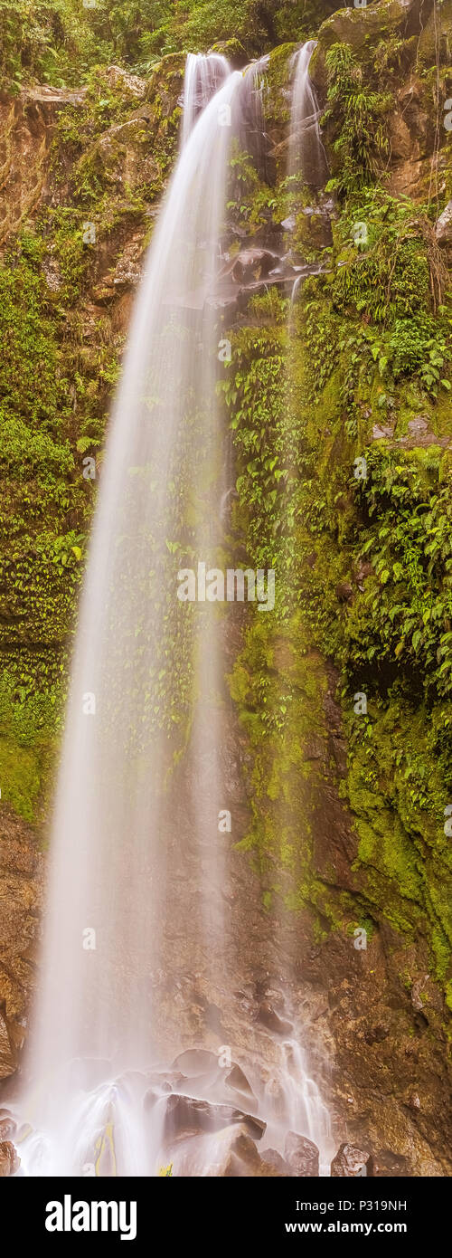 The Lost Waterfalls are located on the slopes of Volcan Baru near Boquete in Panama. There are three waterfalls on this hike. The views and waterfalls Stock Photo